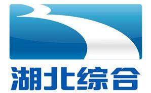 湖北电视台综合频道