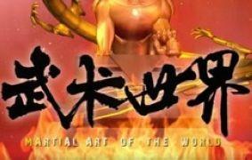 武术世界频道
